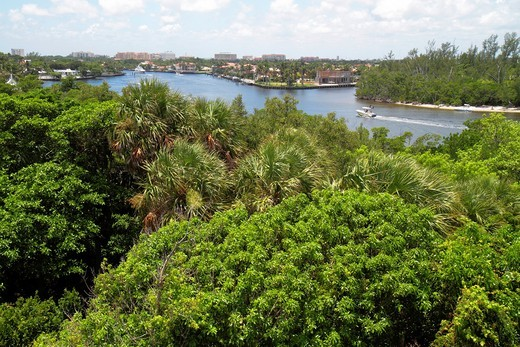 Florida, Boca Raton, Gumbo Limbo Nature Center, Gumbo Limbo Environmental Complex and Nature Center, Lake Wyman, view, Intracoastal Waterway, : Stock Photo