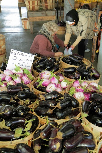 Stock Photo: 1566-715262 Tennessee, Nashville, Nashville Farmers´ Market, agriculture, locally grown, produce, vegetables, fresh, eggplant, sustainability, Green Movement, Muslim, woman, shopping,