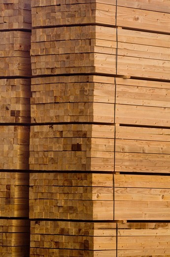 Stock Photo: 1566-717462 Lumber pile at sawmill, Humboldt County, California