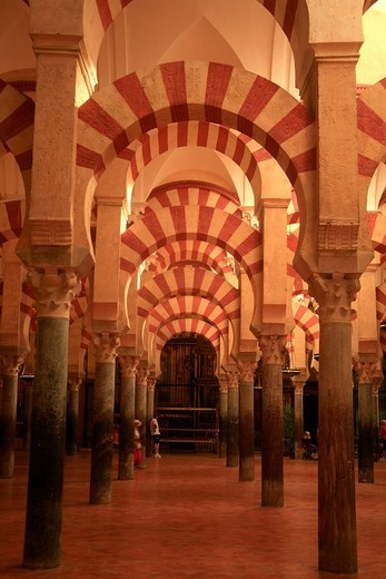 Stock Photo: 1566-717495 Columns and arches in the mosque, Cordoba, Andalusia, Spain