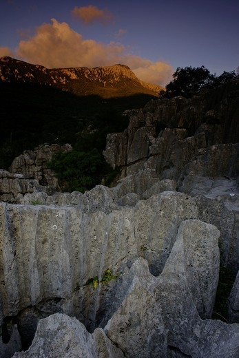 Karstic rocks LLuc Escorca Sierra de Tramuntana Majorca Balearic Islands Spain : Stock Photo