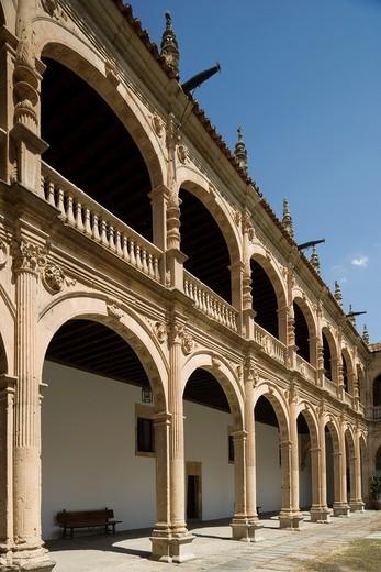 Fonseca college or Irish college, cloister, Salamanca, Castilla y León, Spain : Stock Photo