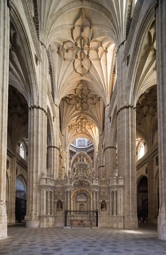 Stock Photo: 1566-722368 Interior New Cathedral, Salamanca, Castilla y león, Spain