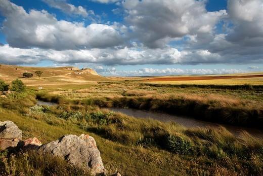 Field of the Battle of Los Arapiles. Salamanca. Castilla y León. Spain. Europe : Stock Photo