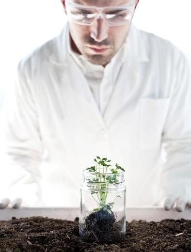 Biogenetic Research : Stock Photo