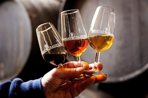 Bodegas Tradición (winery, sherry wine). Jerez de la Frontera, Cádiz province, Andalusia, Spain. : Stock Photo