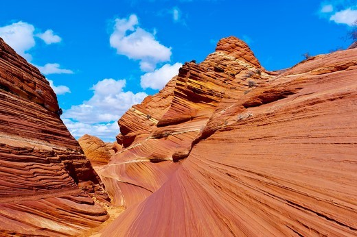 Stock Photo: 1566-730120 The Wave II, Coyote Buttes North, Paria Canyon-Vermillion Cliffs Wilderness Area, Utah-Arizona border, USA