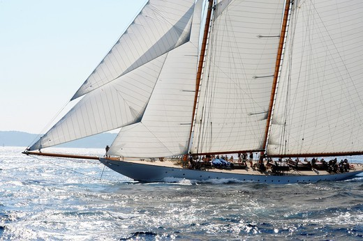 Stock Photo: 1566-731878 France, Var 83, Saint-Tropez, Les Voiles de Saint-Tropez meet every year in late September of beautiful classic yachts competing in regattas superb here gaff schooner Elena 41 meters designed by Nathanael G  Herreshoff