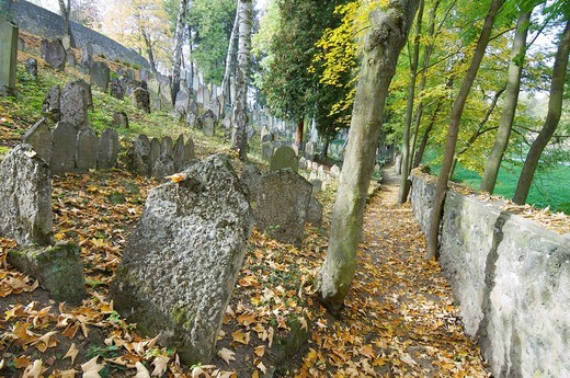 Jewish cemetery in Trebic, World Cultural and Natural Heritage of UNESCO, Moravia, Czech Republic : Stock Photo
