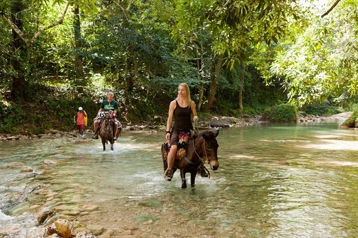 Horseback Tour to the Waterfall Cascada El Limon, Las Terrenas, Samana Peninsula, Dominican Republic : Stock Photo