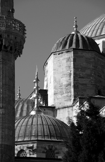 The Blue Mosque in Istanbul : Stock Photo