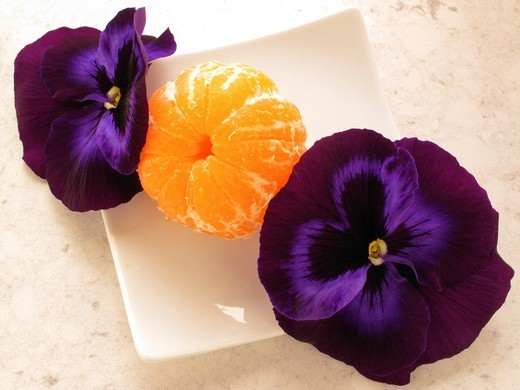 Tangerine snack Heartsease Viola tricolor : Stock Photo