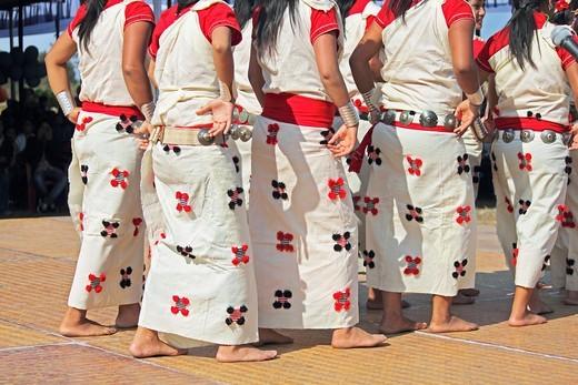 Nyishi tribes, women performing dance at Namdapha Eco Cultural Festival, Miao, Arunachal Pradesh, India : Stock Photo
