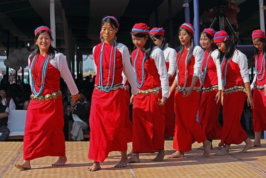 Stock Photo: 1566-739089 Tagin Women, Tribes Performing Dance at Namdapha Eco Cultural Festival, Miao, Arunachal Pradesh, India