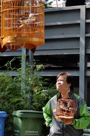 Hong Kong: a man and its singing bird in a cage evaluating another bird at the Yuen Po Street Bird Garden in Kowloon : Stock Photo