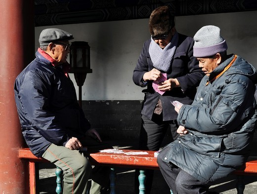 Stock Photo: 1566-741218 Beijing (China): men playing cards in the Temple of Heaven Park