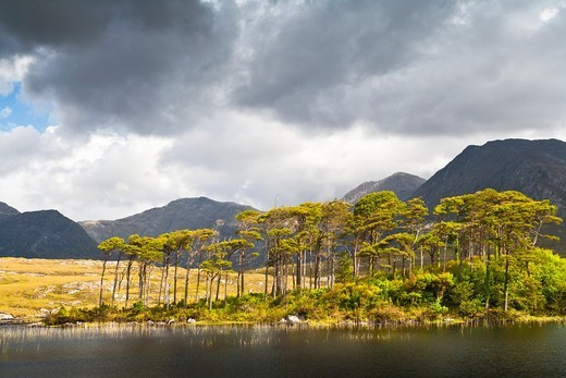 Derryclare Lough and Benna Beola, Connemara, County Galway, Ireland, Europe : Stock Photo