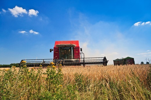 Stock Photo: 1566-744632 Harvest of a barley field with a harvester in Lower Saxony, Germany, Europe