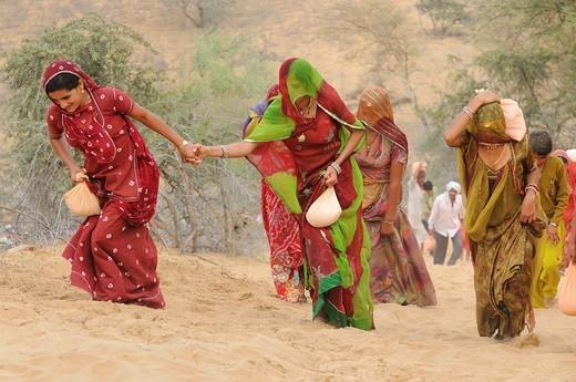 India, Rajasthan, Mukam surroundings, Jambeshwar festival, Bishnoi pilgrims climbing Samrathal dune : Stock Photo