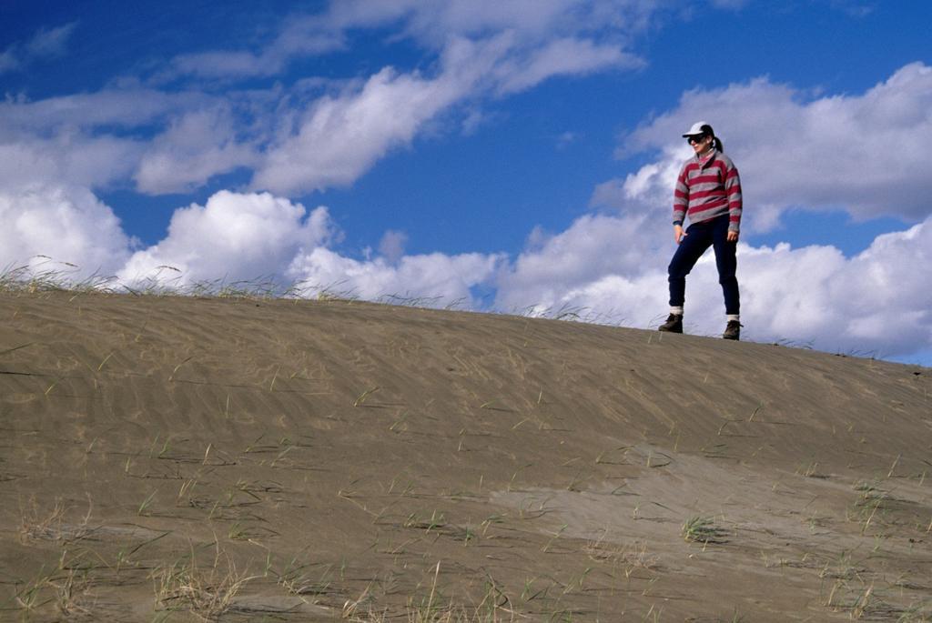 Stock Photo: 1566-748247 Dune, Juniper Dunes Wilderness, WA
