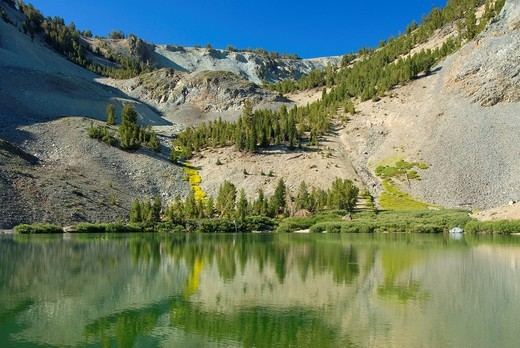 Stock Photo: 1566-748408 Emma Lake, Toiyabe National Forest, CA