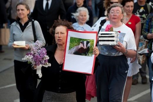 Demonstrators protesting about the plans to cull badgers in wales as a means of controlling bovine TB, Aberystwyth Wales UK : Stock Photo