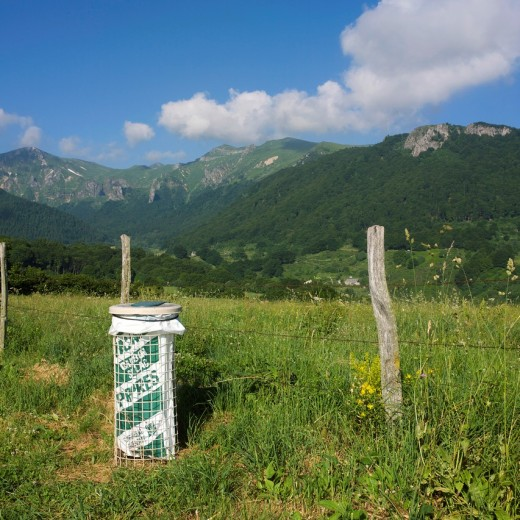 Stock Photo: 1566-752321 Environmental protection in Auvergne. France