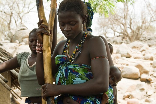 African bedik women pounding peanuts, Iwol village, Bassari country, Senegal, Africa : Stock Photo