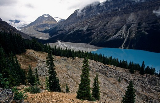 Stock Photo: 1566-755337 Peito lake  Icefields parkway  Banff National Park  Rocky Mountains  Alberta  Canada