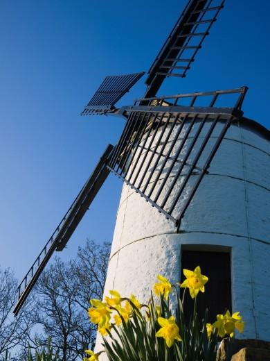 Ashton Windmill at Chapel Allerton, Somerset, England, United Kingdom : Stock Photo