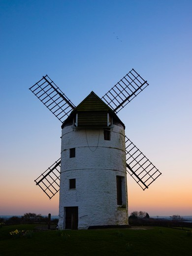 Ashton Windmill at dusk while birds fly overhad  Chapel Allerton, Somerset, England, United Kingdom : Stock Photo