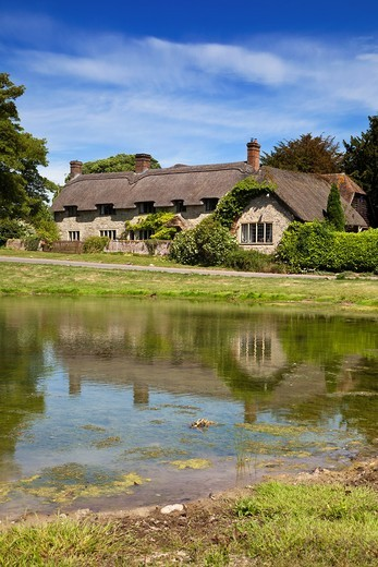 Ashmore pond and Thatched Cottage, Ashmore, Dorset, England, UK : Stock Photo