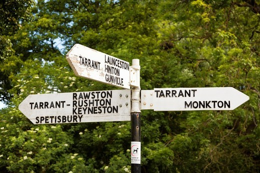 Signpost showing directions to The Tarrants, Dorset, England, UK : Stock Photo