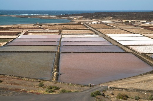SALINAS DE JANUBIO LANZAROTE Salination plant sea salt fields : Stock Photo