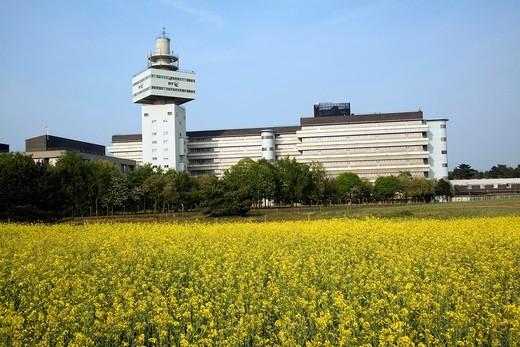 Stock Photo: 1566-762924 BT Adastral Park research and development headquarters, Martlesham, near Ipswich, Suffolk, England
