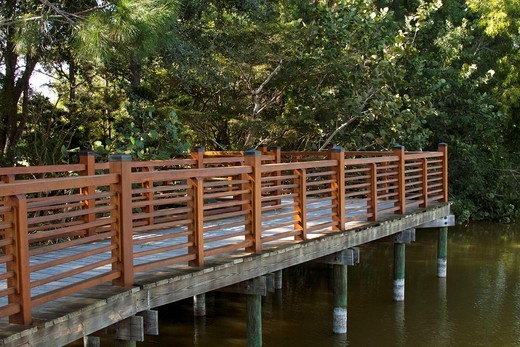 A wooden railed walkway over the water in a garden setting : Stock Photo