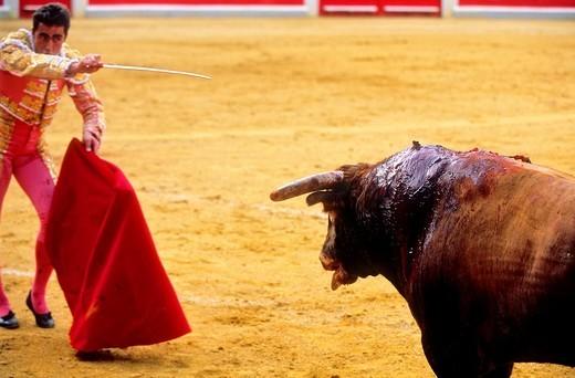 Stock Photo: 1566-766175 Bullfight at the Plaza de Toros, Granada, Andalusia, Spain, Europe