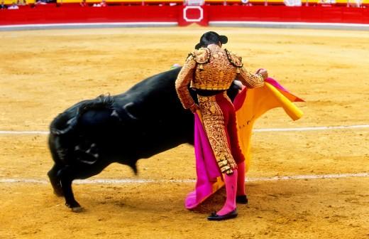 Bullfight at the Plaza de Toros, Granada, Andalusia, Spain, Europe : Stock Photo