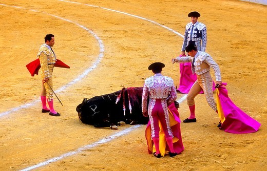 Bullfight at the Plaza de Toros of 'La Maestranza', Seville, Andalusia, Spain, Europe : Stock Photo