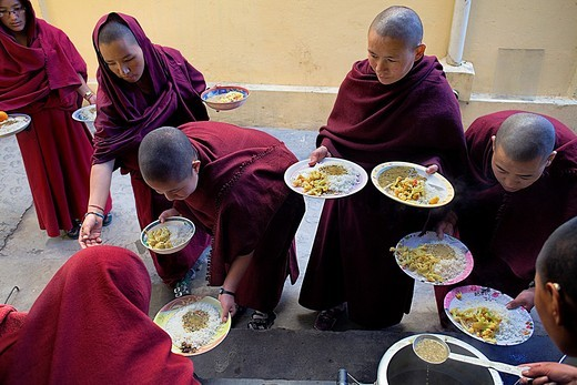 Stock Photo: 1566-766309 Nuns Lunch Geden Choeling Nunnery, McLeod Ganj, Dharamsala, Himachal Pradesh state, India, Asia