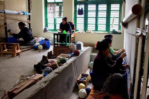 Stock Photo: 1566-766368 Workshop of Tibetan handicrafts Centre Carpets McLeod Ganj, Dharamsala, Himachal Pradesh state, India, Asia