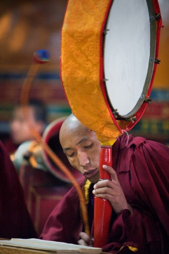 Stock Photo: 1566-766393 Puja,Monks praying, in Dip Tse Chok Ling Monastery McLeod Ganj, Dharamsala, Himachal Pradesh state, India, Asia