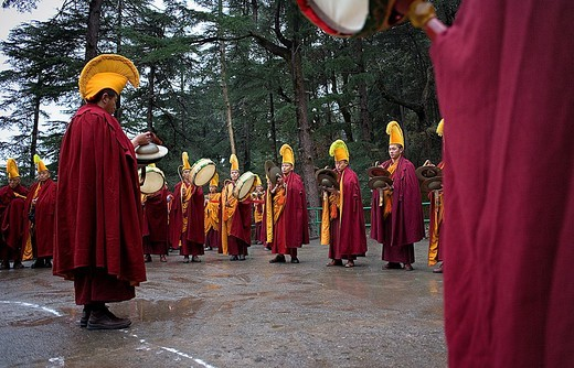 Stock Photo: 1566-766407 Ritual, in Namgyal Monastery,in Tsuglagkhang complex  McLeod Ganj, Dharamsala, Himachal Pradesh state, India, Asia