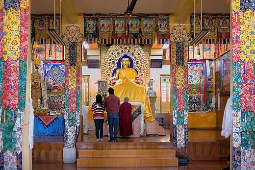 Stock Photo: 1566-766445 Praying, in Namgyal Monastery,in Tsuglagkhang complex  McLeod Ganj, Dharamsala, Himachal Pradesh state, India, Asia