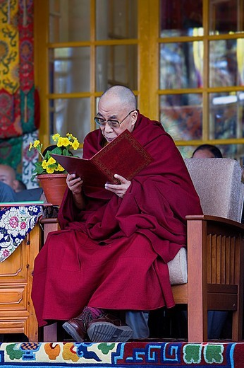 Stock Photo: 1566-766479 His holiness the Dalai Lama, in Namgyal Monastery,in Tsuglagkhang complex  McLeod Ganj, Dharamsala, Himachal Pradesh state, India, Asia