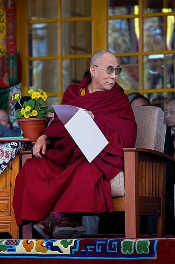 His holiness the Dalai Lama, in Namgyal Monastery,in Tsuglagkhang complex  McLeod Ganj, Dharamsala, Himachal Pradesh state, India, Asia : Stock Photo