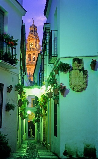 Stock Photo: 1566-766502 Córdoba Andalusia  Spain: Calleja de las Flores, in the background Bell tower or minaret of the mosque-cathedral