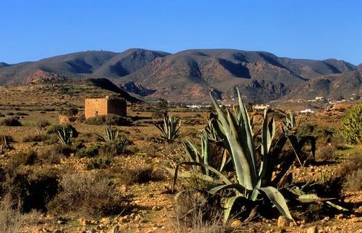 'Torre de los Alumbres' Arabic fortress Nazari style Near 'El Playazo' Cabo de Gata-Nijar Natural Park Biosphere Reserve, Almeria province, Andalucia, Spain : Stock Photo