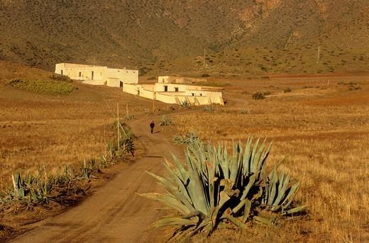 'Cortijo de los Genoveses' Traditional farmhouse in Campillo de Genoveses Cabo de Gata-Nijar Natural Park  Biosphere Reserve, Almeria province, Andalucia, Spain : Stock Photo