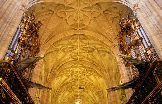 The cathedral, central vault Almería  Andalucia  Spain : Stock Photo